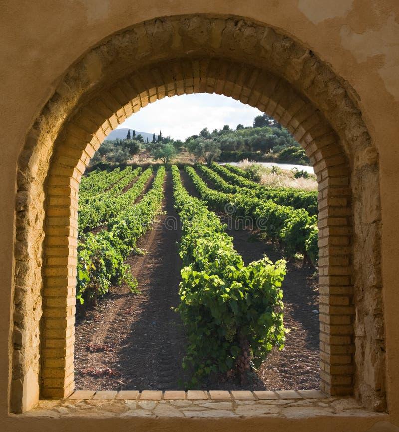 被成拱形的葡萄园视窗 免版税库存照片