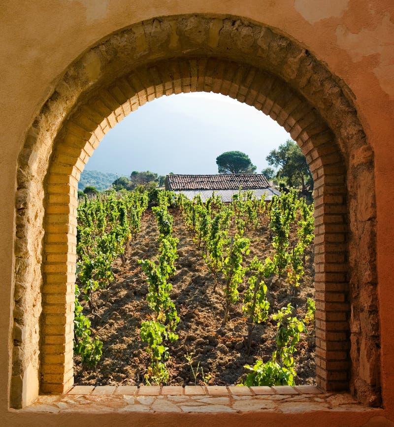 被成拱形的葡萄园视窗 免版税库存图片