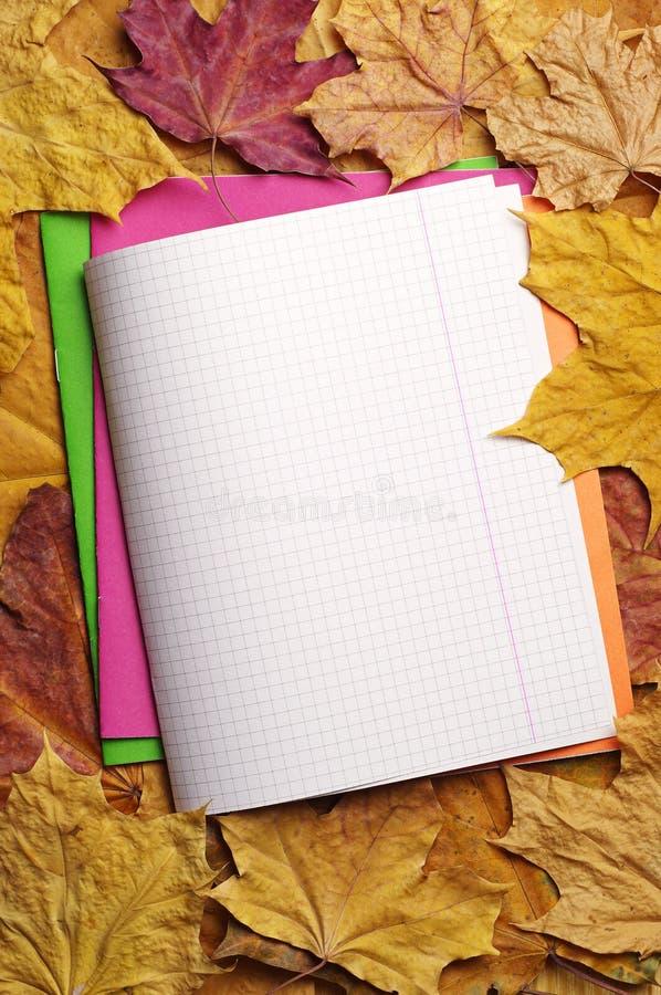被打开的学校笔记本 库存照片