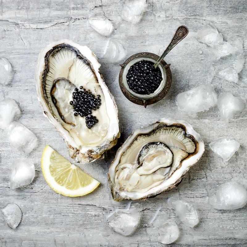 被打开的牡蛎用黑鲟鱼鱼子酱和柠檬在冰在灰色具体背景 库存图片