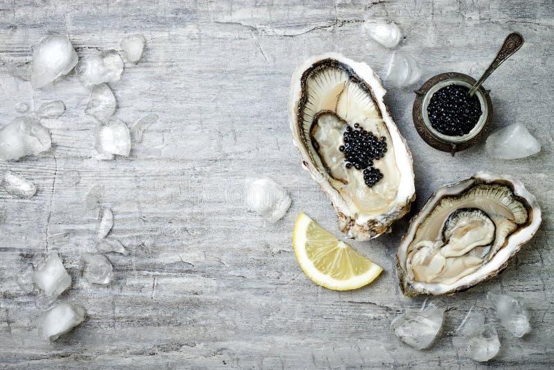 被打开的牡蛎用黑鲟鱼鱼子酱和柠檬在冰在金属片在灰色具体背景 顶视图,平的位置 免版税库存照片