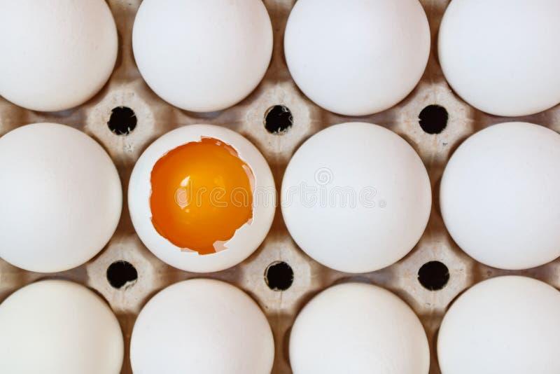 被打开的鸡鸡蛋用在整蛋中的卵黄质在纸板盘子特写镜头 顶视图 免版税库存照片