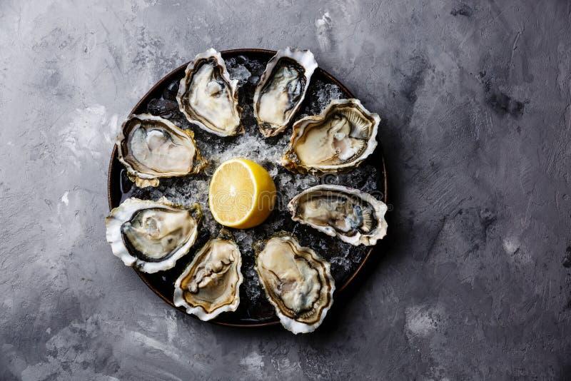 被打开的Oysters Fines de克莱尔 库存照片