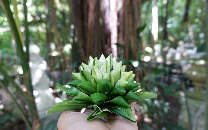 被折叠的pandan叶子到花里塑造 免版税图库摄影
