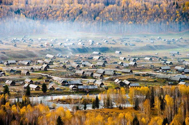 被拥抱的森林村庄 免版税库存图片