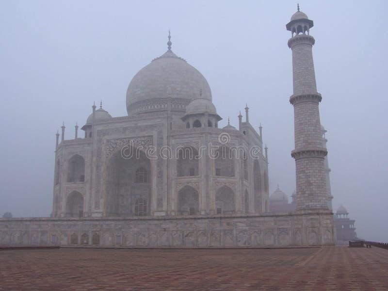 被捉住的印度mahal薄雾早晨taj 库存图片