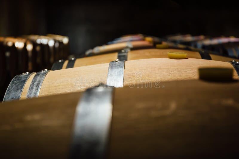 被排列的葡萄酒桶在地窖里 免版税库存图片