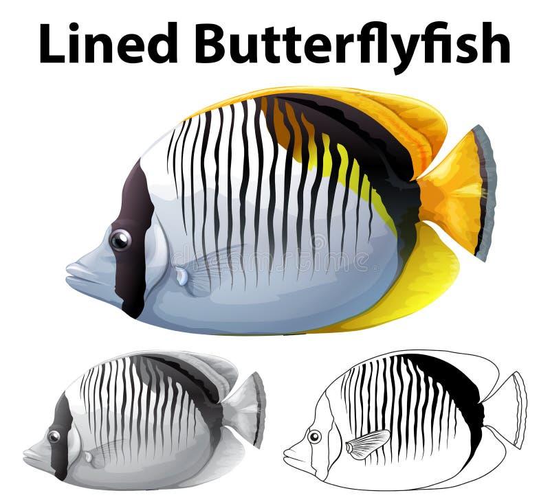 被排行的蝴蝶鱼的起草的字符 库存例证