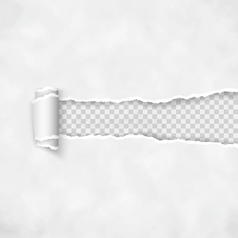 被撕毁的纸与滚动的边缘 纸条纹概略的打破的边界  向量 向量例证