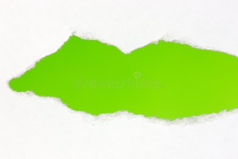 被撕毁的纸与绿色空间 库存图片