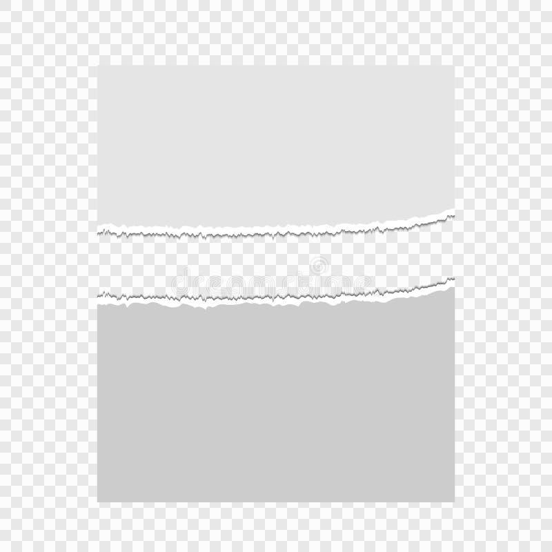 被撕毁的纸张在透明背景的 您设计新例证自然向量的水 皇族释放例证