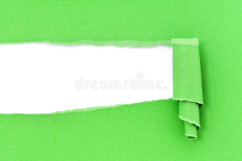 被撕毁的绿皮书 免版税库存图片