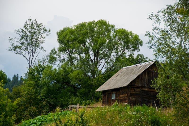 被操刀的农村原木小屋在乌克兰村庄 免版税库存图片