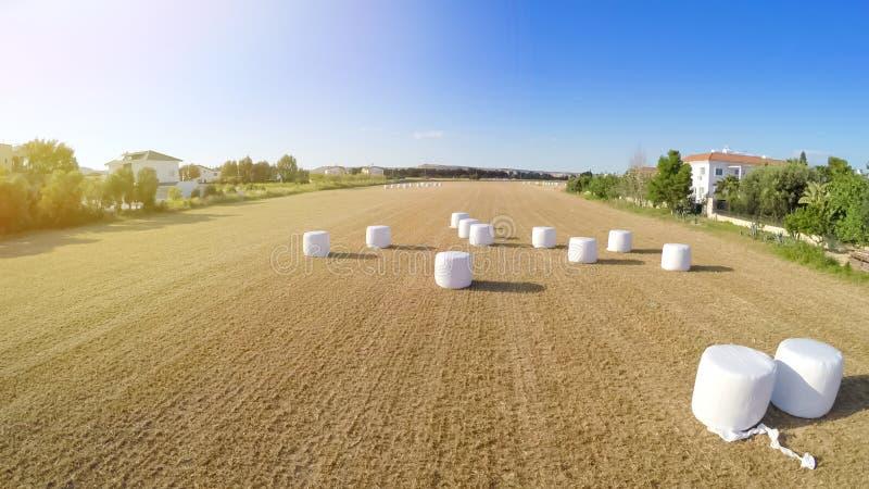 被收获的土地在乡区,麦田空中射击,农业产业 库存图片