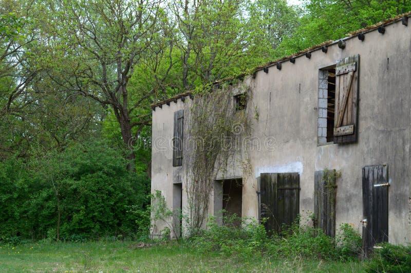 被放弃的农场在森林里 免版税库存图片