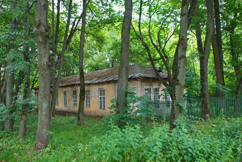 被放弃的房子在森林里,包围由绿色树 免版税库存照片