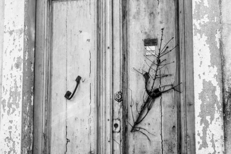 被放弃的房子的一个老门 图库摄影