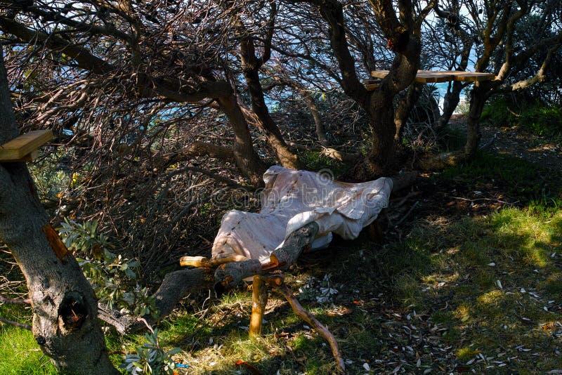 被放弃的无家可归的床在树下 免版税库存图片