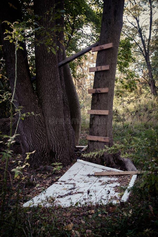 被放弃的树上小屋 免版税图库摄影