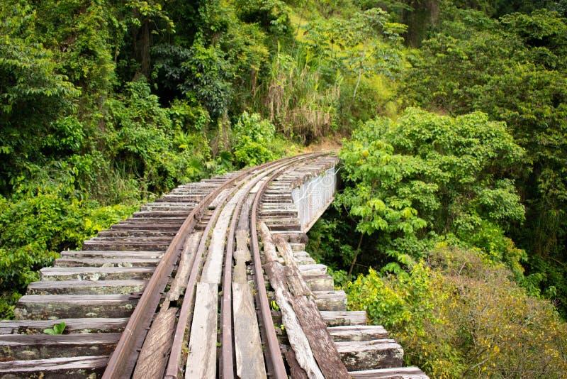 被放弃的火车轨道在哥伦比亚的密林 免版税图库摄影