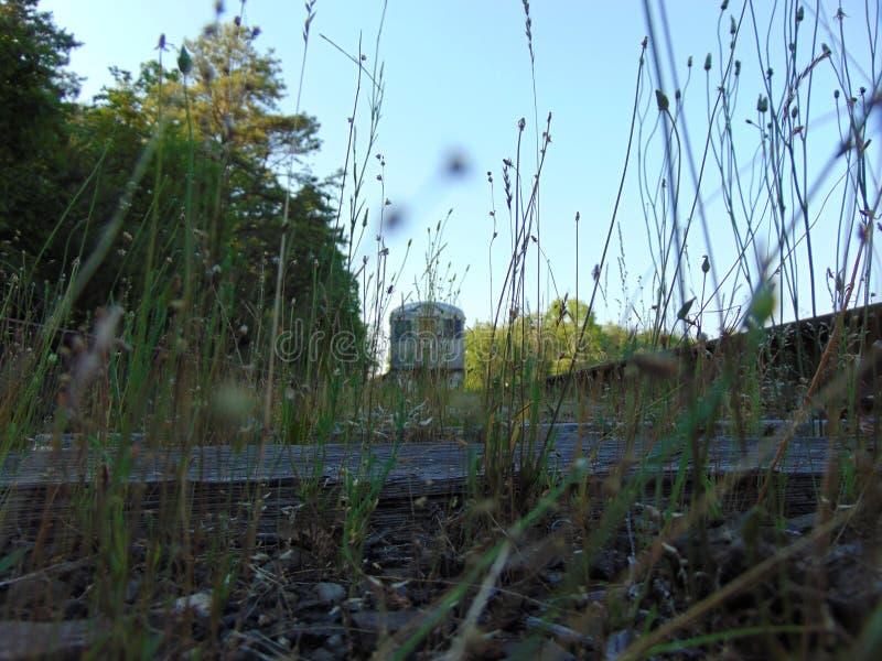 被放弃的火车通过杂草 免版税库存图片