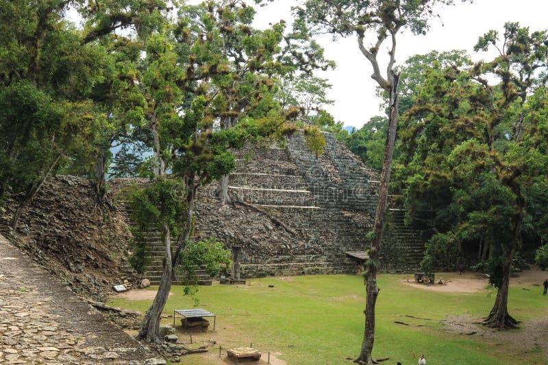 被放弃的玛雅寺庙, Copan,洪都拉斯 免版税图库摄影