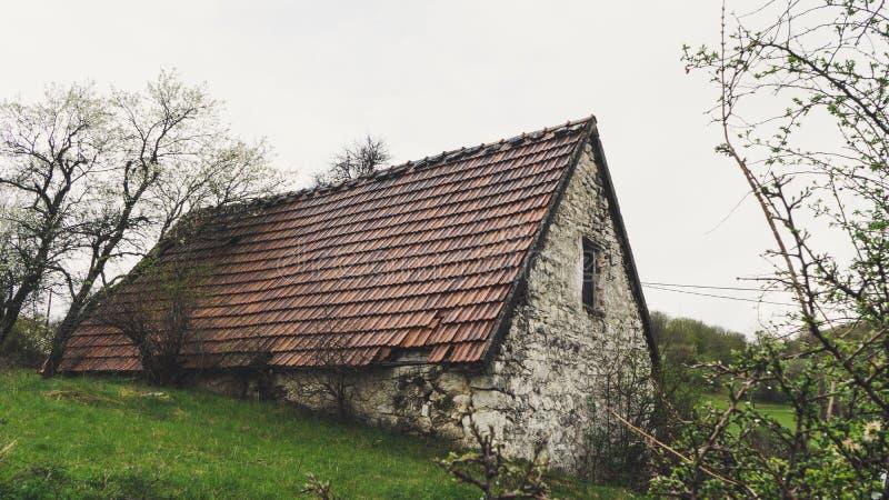 被放弃的老石头农村房子 村庄房子 流浪汉在森林困扰了石房子和土路 树白色开花 库存照片