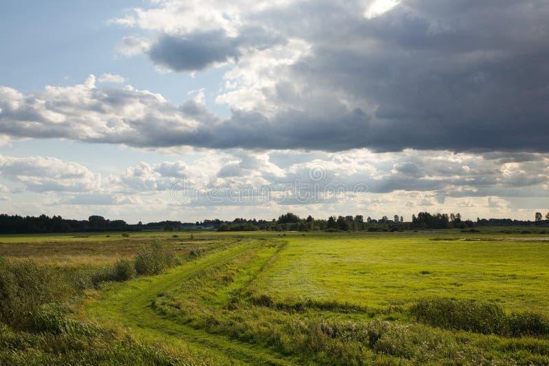 被放弃的草甸部分 库存照片