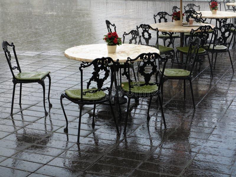 被放弃的重的阵雨制表葡萄酒 库存照片