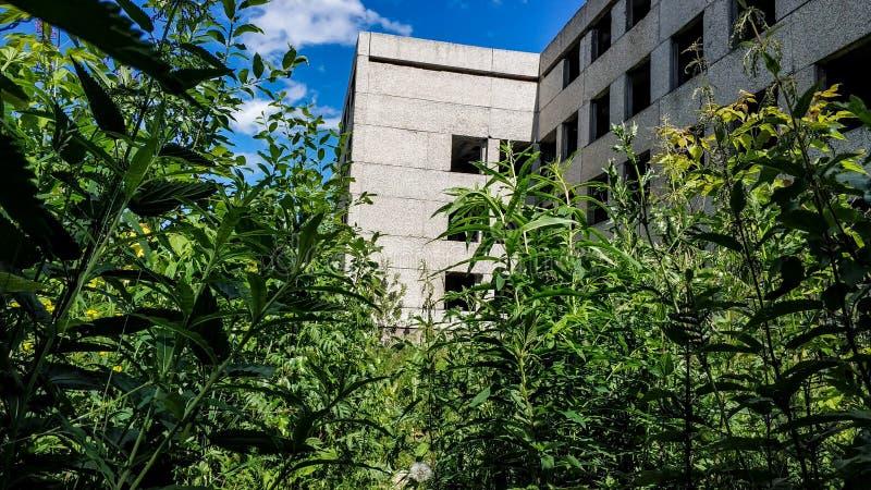 被放弃的长得太大的水泥房子在一个晴朗的夏日 没有玻璃窗的大厦 免版税库存照片