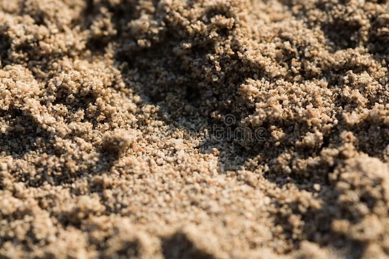 被日光照射了沙滩五谷宏指令特写镜头 免版税库存图片