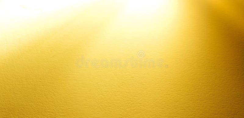 被日光照射了的焕发 免版税图库摄影