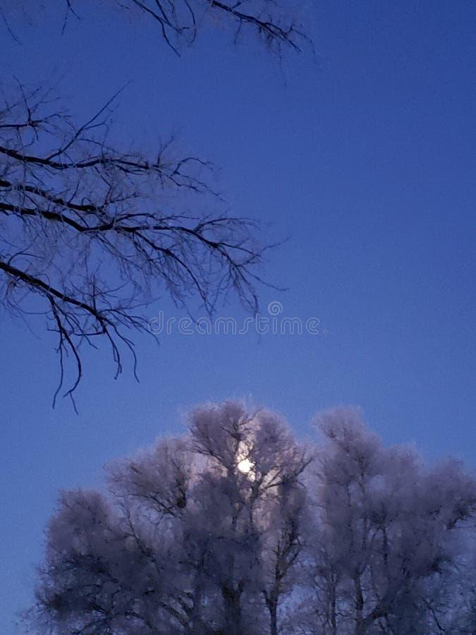 被月光照亮斯诺伊天空 免版税库存照片