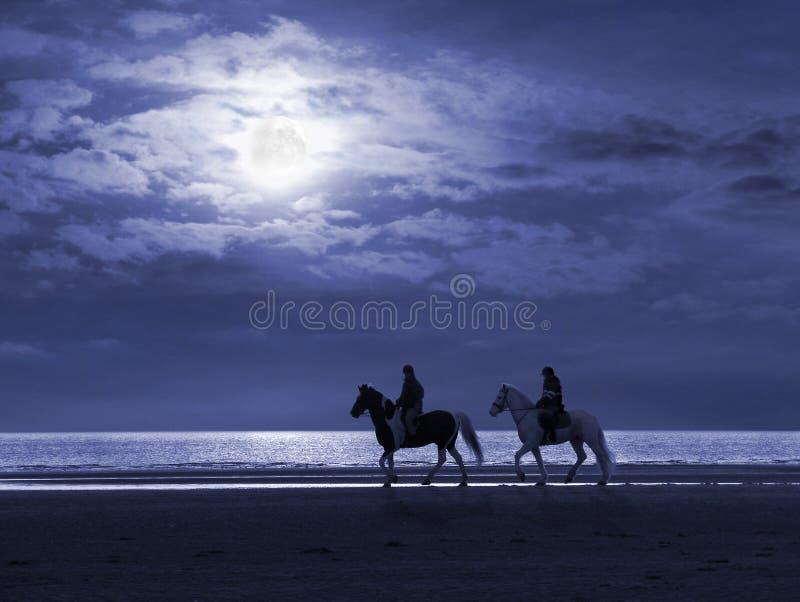 被月光照亮海滩的horseriders 库存图片