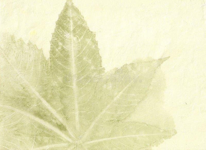 被构造的纤维有机纸张 免版税库存照片