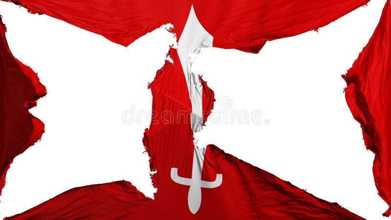 被毁坏的加德满都旗子 库存例证