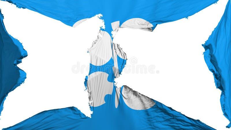 被毁坏的石油输出国组织旗子 皇族释放例证