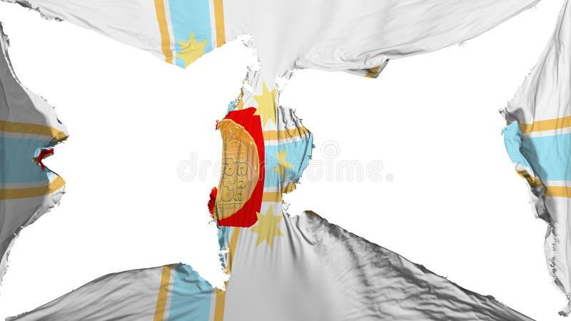 被毁坏的第比利斯市旗子 库存例证