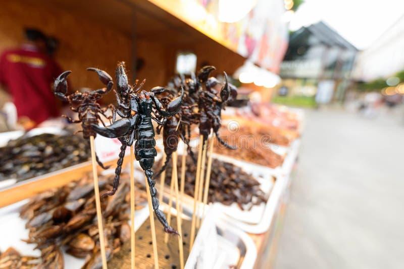 被油炸的蝎子为吃 库存图片