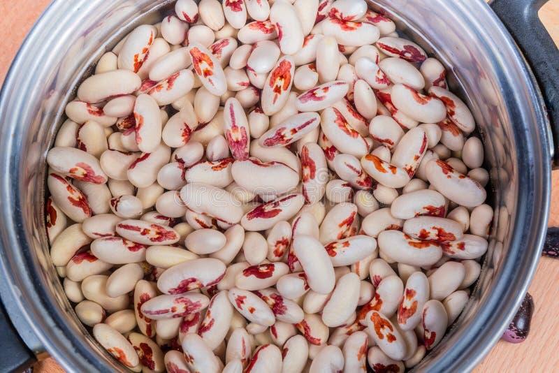 被浸泡的有斑点的扁豆顶视图在烹调罐的 免版税库存图片