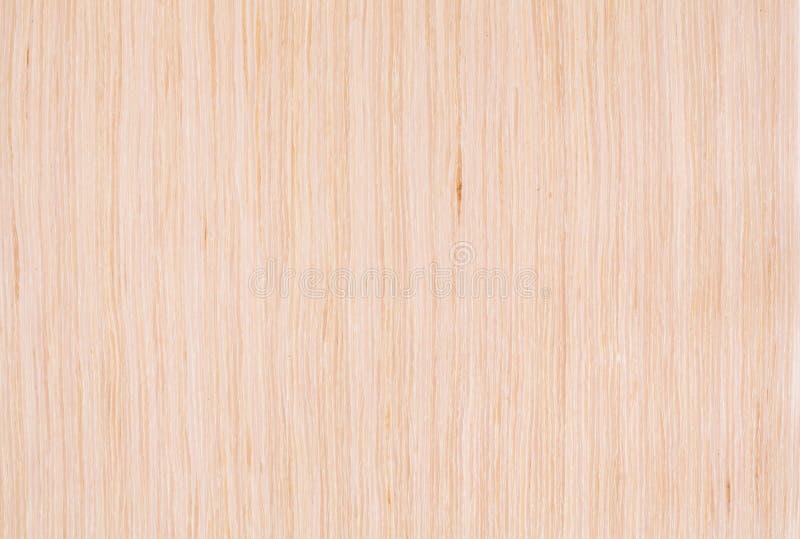 被漂白的橡木纹理 免版税图库摄影