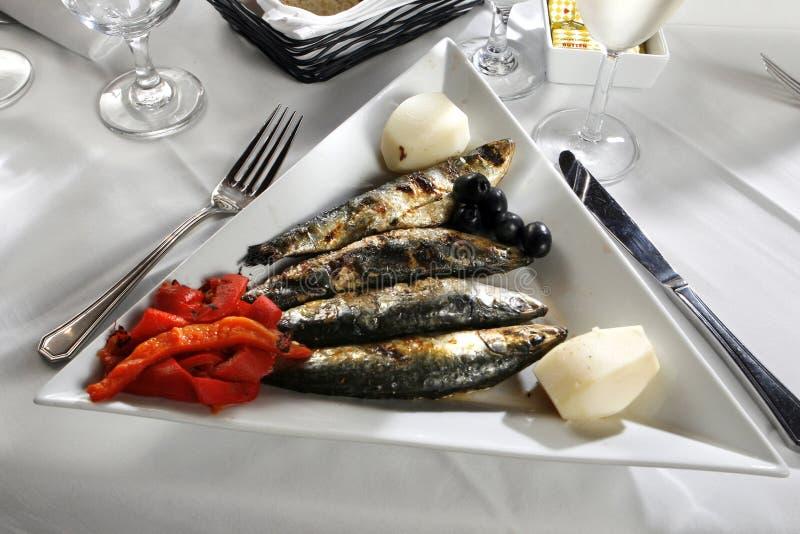被炖的胡椒红色沙丁鱼 免版税库存照片