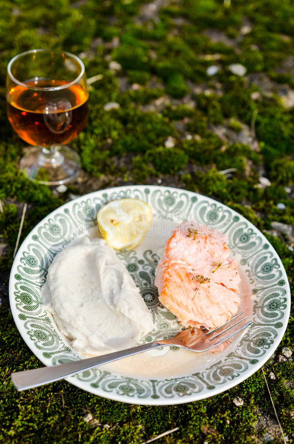 被烘烤的三文鱼用土豆泥 免版税图库摄影