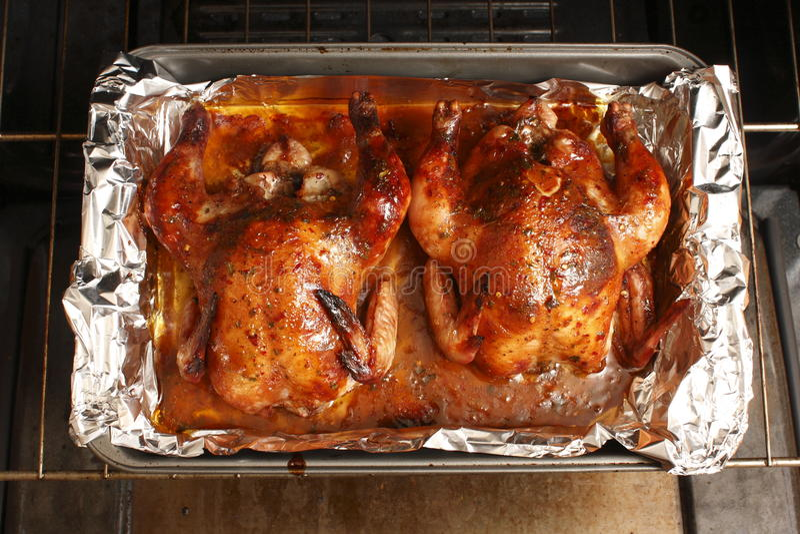 被烘烤的康沃尔比赛母鸡 库存图片