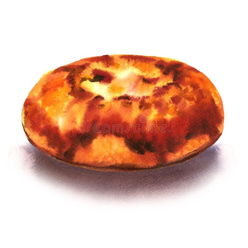 被烘烤的新鲜的甜小圆面包用酸奶干酪,乳酪蛋糕,酥皮点心,点心,被隔绝,在白色的水彩例证 皇族释放例证
