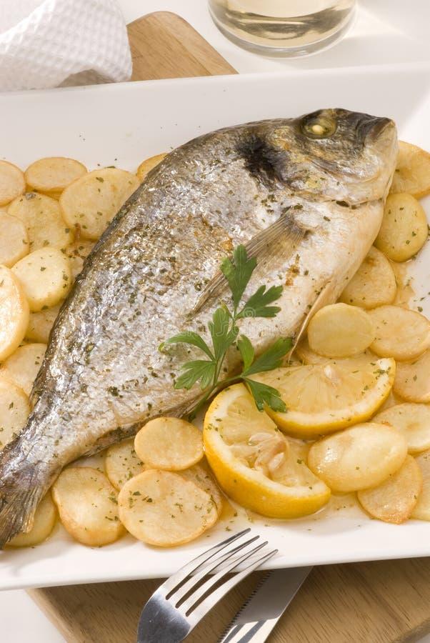 被烘烤的烹调gilthead西班牙语 免版税库存照片