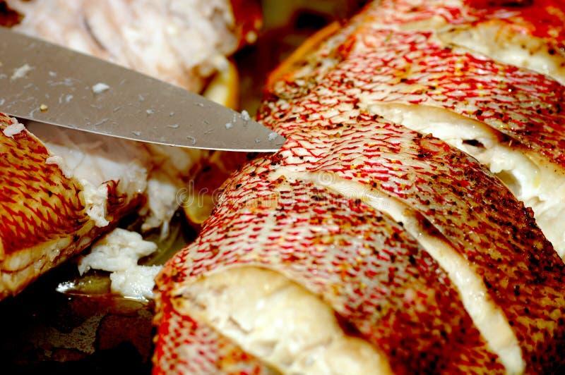 被烘烤的红鲷鱼 库存图片