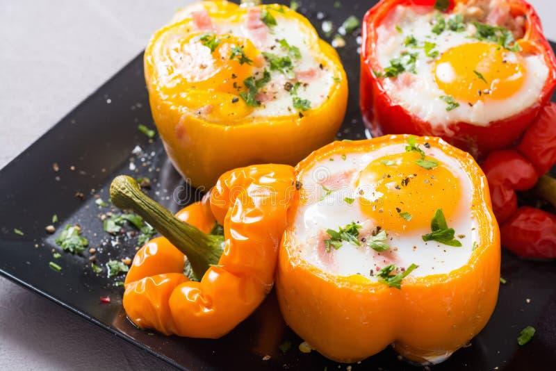 被烘烤的胡椒充塞用烟肉和鸡蛋 图库摄影