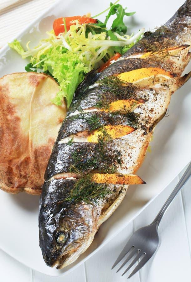 被烘烤的莳萝柠檬土豆鳟鱼 免版税库存照片
