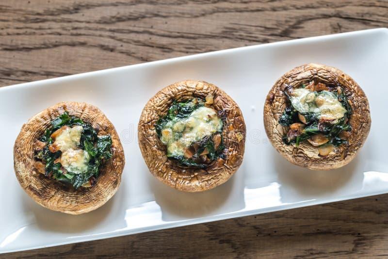 被烘烤的蘑菇充塞用菠菜和乳酪 库存图片